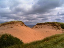 PEI5 by da-joint-stock