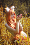 Horo 2 by YuuGray