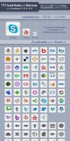 111 Social Meda and Web Icons by survivorcz