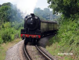 SDJR 88 at Stogumber by The-Transport-Guild