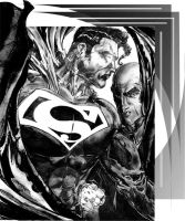 Superman and Luthor by StevenVnDoom