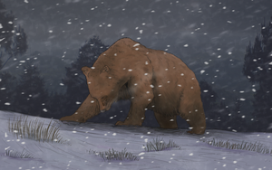 Bear in the blizzard by Thunderwest