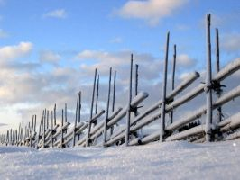 'Fence and Winter' by Suensyan