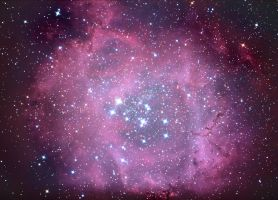 The Rosette Nebula by Captain-Marmote