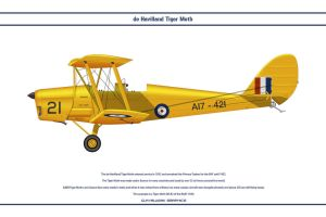Tiger Moth Australia 2 by WS-Clave