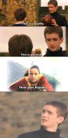 Quidditch Explained by Wood by sabrieth