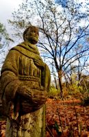 St. Francis of Assisi by FrostyGorillaz