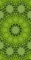 HG Green Layer Lilly Leaves Kaleidoscope by CarlosAE