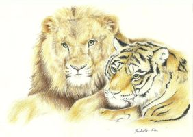 Lion n' Tiger by Foxtails9