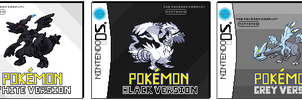 pokemon gen V pixel boxes by furythehog