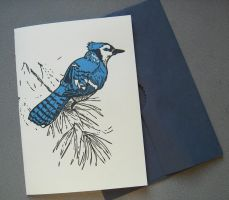 Blue Jay Letterpress Card by feynico