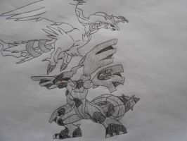 Reshiram And Zekrom (colored) by Spyroconvexity