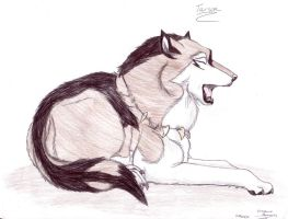 WildSpiritWolf Gift--Tarson by LovestruckDemoness
