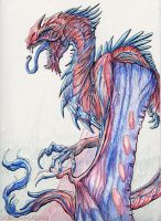 YIPYIP by pneumaticoutlaw