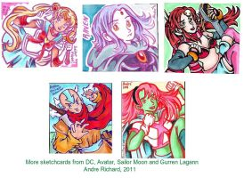Anime and Cartoon Sketchcards by AndrePaploo