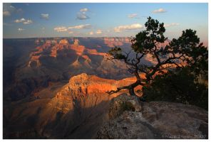 The Grand Canyon by Nate-Zeman