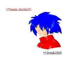 Sonic the Human by Streak2005