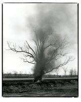 Burning Tire and Tree by JaredPLNormand