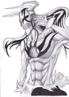 Bleach:Vasto Lorde by Helldrawer