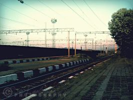 Power Lines by Egglington