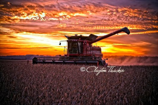 Harvest Sunset 12 by cthacker