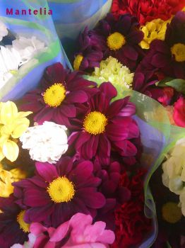 I'd Take This Bunch Of Flowers by Mantelia