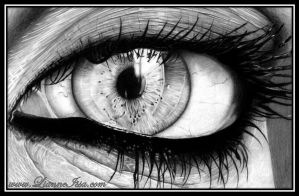 Windows to the soul by Lianne-Issa