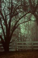 How Dreary by PatchworkPearl