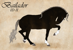 Bailador Import  II by LiaLithiumTM