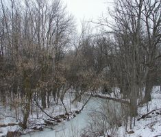 Frozen Stream Landscape 1 by FantasyStock