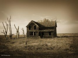 Dead Land by erbphotography