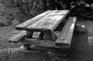 Picnic Table by MrQuallzin