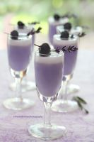 Lavender Infused Panna Cotta by theresahelmer
