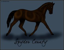 Spyder County by whiskeyone