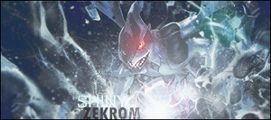Shiny Zekrom by StarkSCII