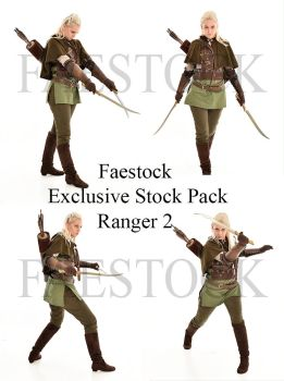 Exclusive Ranger Stock Pack 2 by faestock