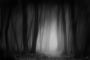 -Road to realization- by Janek-Sedlar