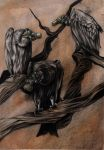 A Committee of Vultures by Elsma