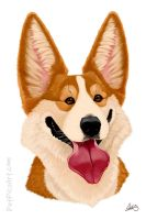 Corgi Caricature by CharReed