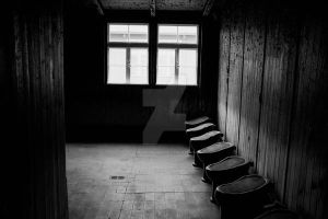 Wc's in a concentration camp by Limaradragon