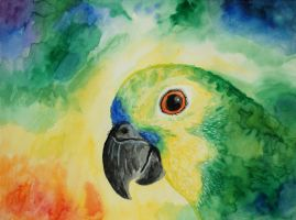 Huntington the Blue-Fronted Amazon by ConnyDuck