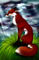 red fox by Canned-Beans