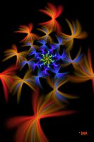 Radial Flowers by baba49