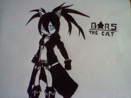 Black Rock Shooter the Cat (2012 Anime) by EvoDeus