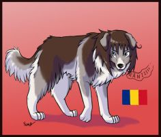 Dogtalia OC: Romania -trade- by PurplePandog