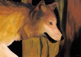 Wolf in Oil by tabalon