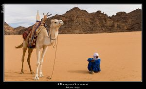 A Tuareg and his Camel by plailleur