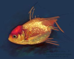Fish Scale Study by Elamen