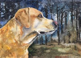 Labrador by GeorgeArt23