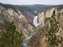 yellowstone river lower falls 09 by featherstockimages